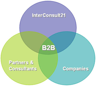 InterConsult21's Integrated Interaction between Partners, Consultants & Companies